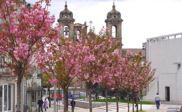 Braga - Braga